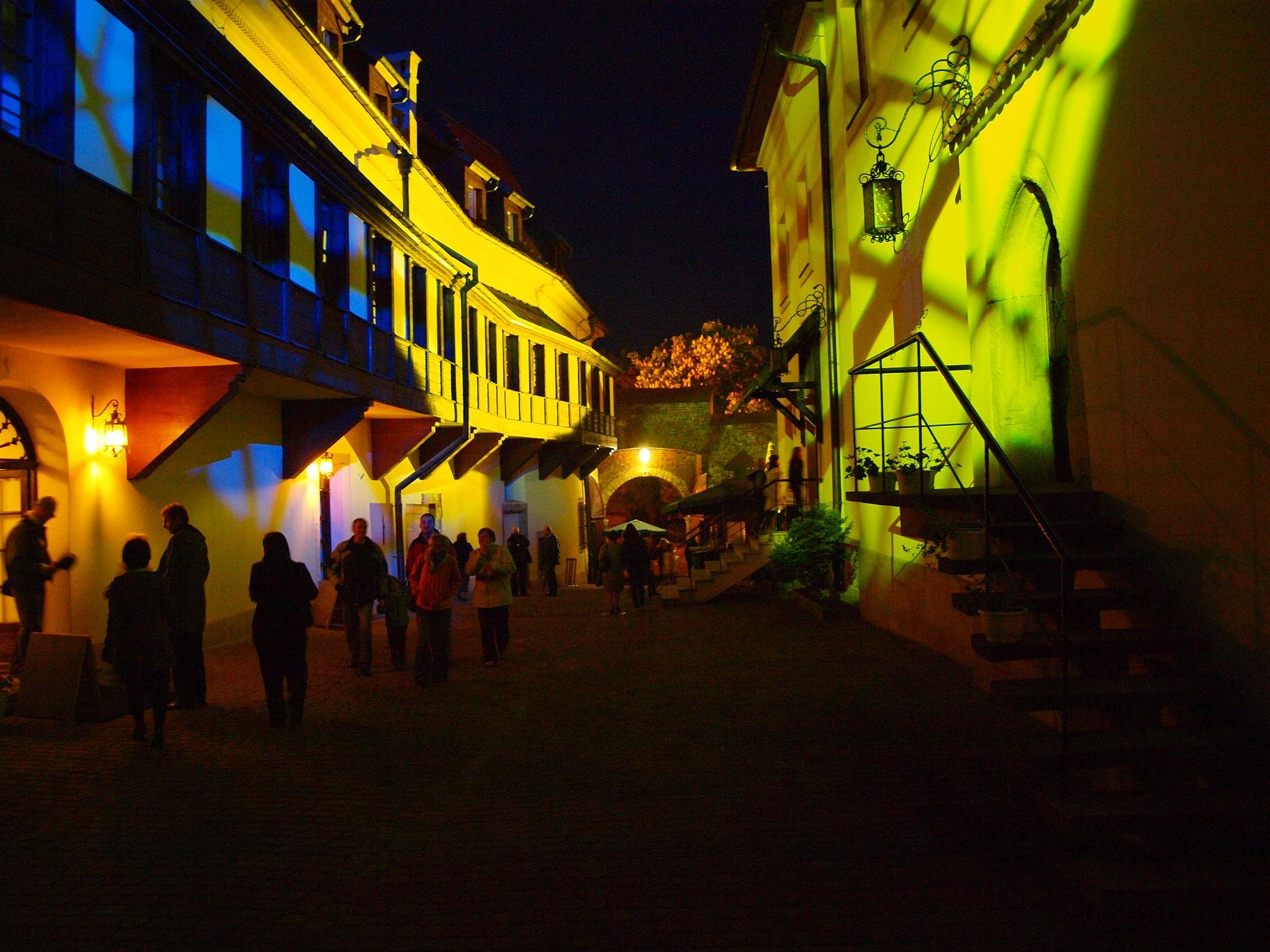 Night of Museums - The Salt-Cellar Show