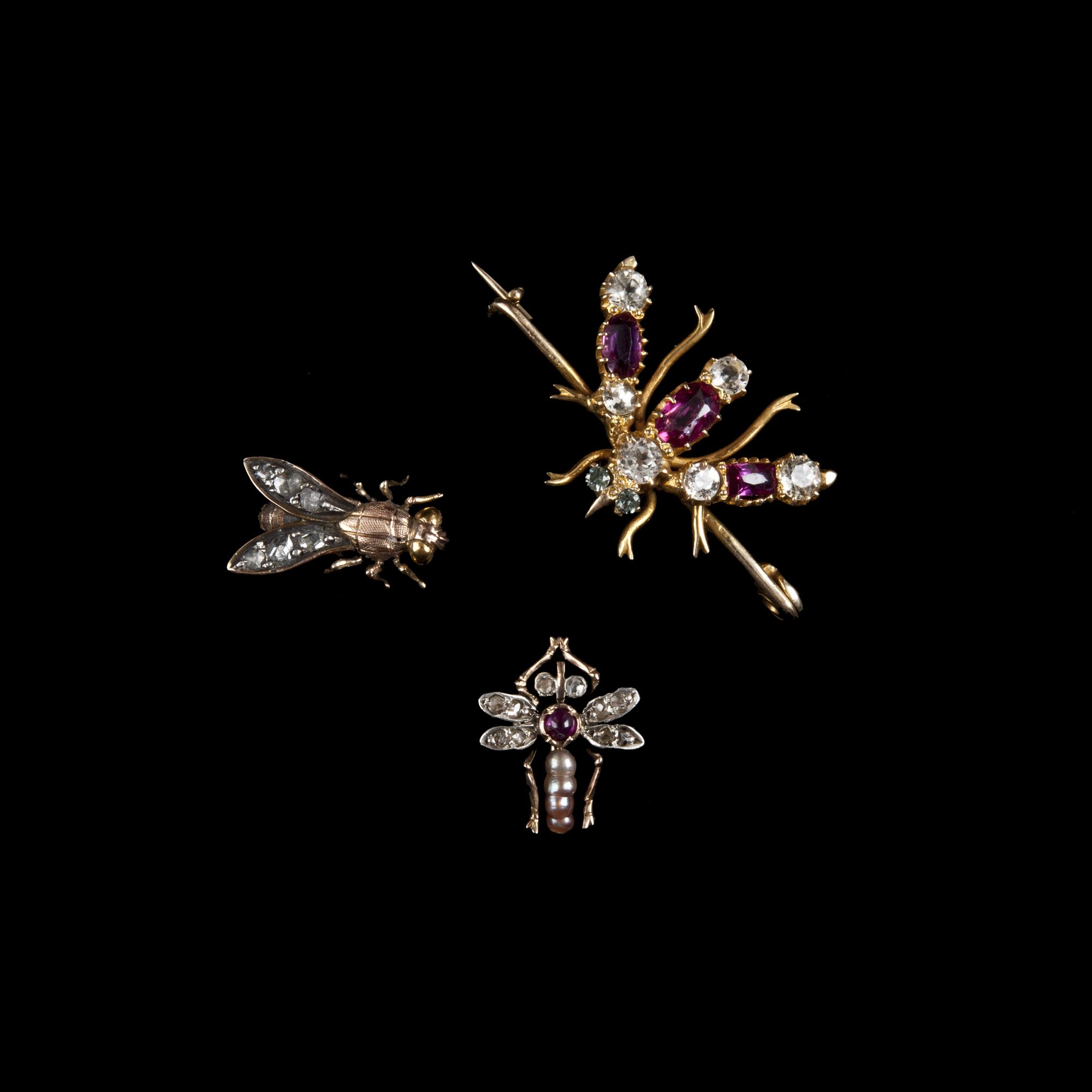 Szpilki krawatowe i broszka, pocz. XX w. Kolekcje A. Leja i Salonu Antyków Kolekcjoner Nowy Sącz
